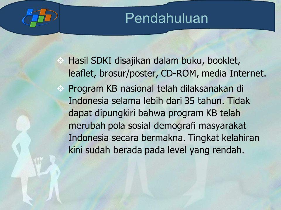 Pendahuluan Hasil SDKI disajikan dalam buku, booklet, leaflet, brosur/poster, CD-ROM, media Internet.
