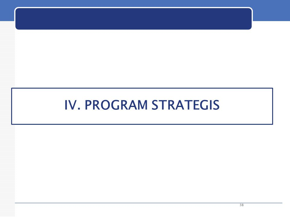 IV. PROGRAM STRATEGIS