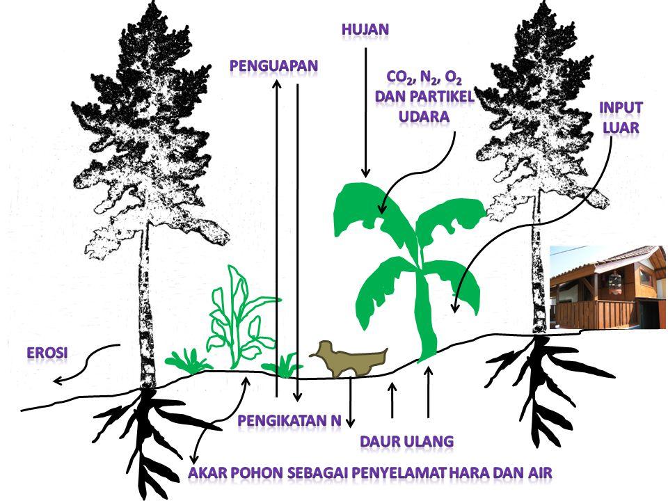CO2, N2, O2 dan partikel udara
