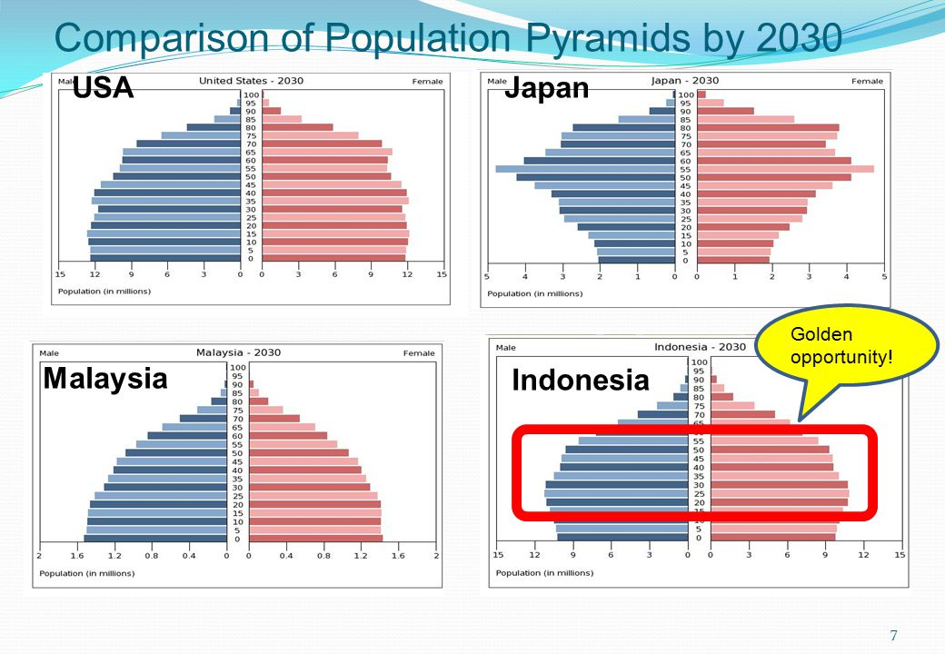 Comparison of Population Pyramids by 2030