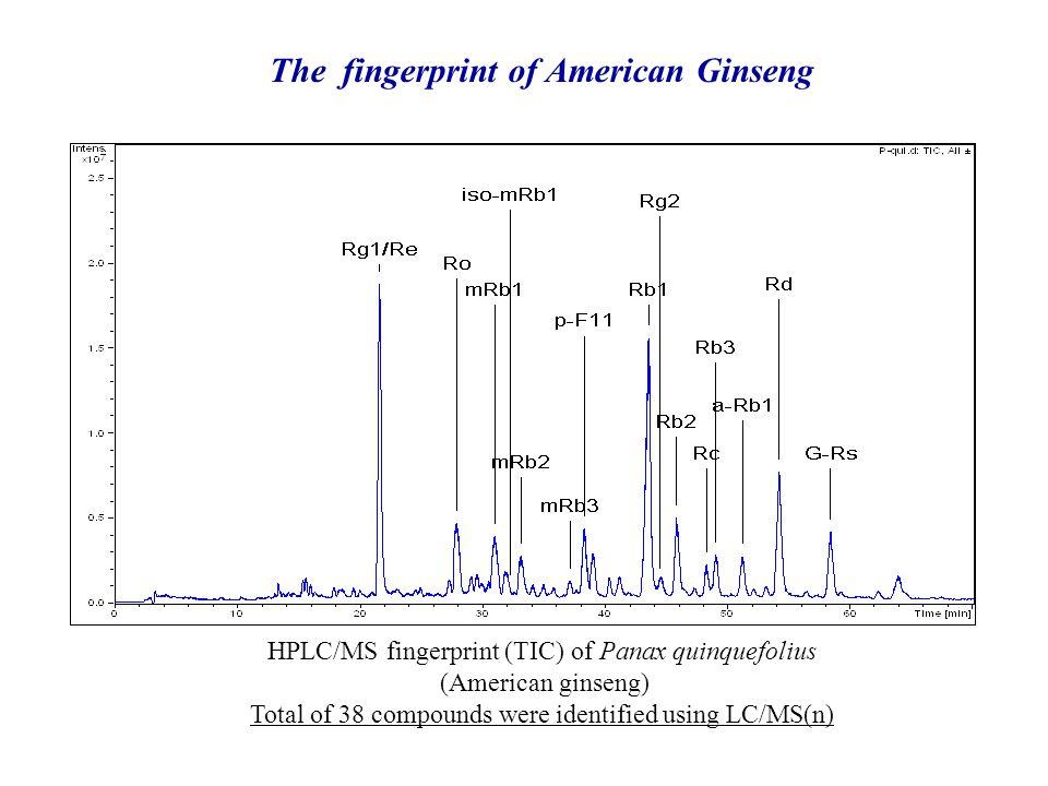 The fingerprint of American Ginseng