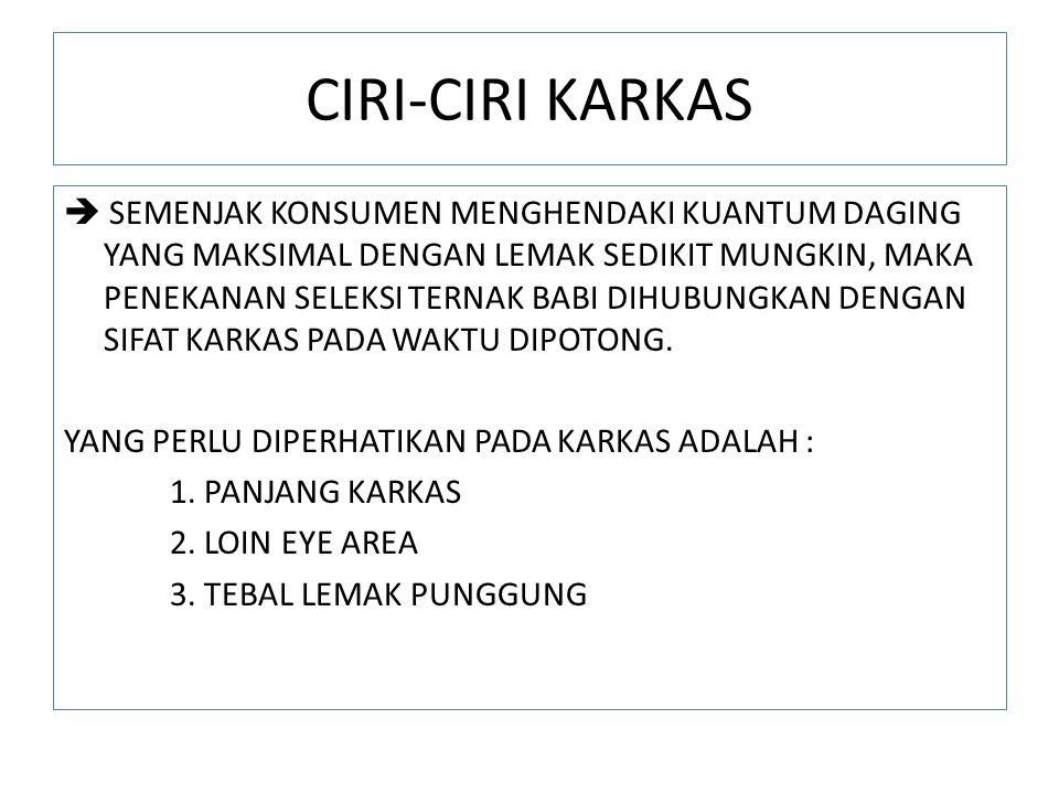 CIRI-CIRI KARKAS