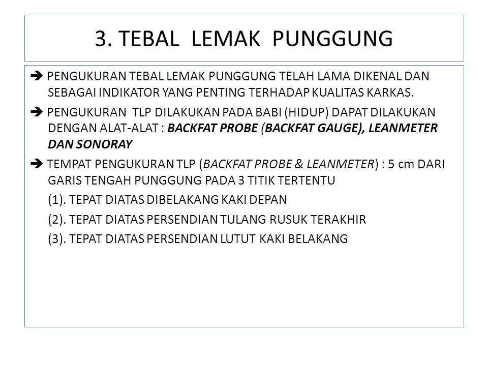 3. TEBAL LEMAK PUNGGUNG