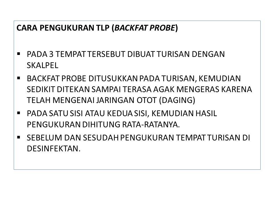 CARA PENGUKURAN TLP (BACKFAT PROBE)