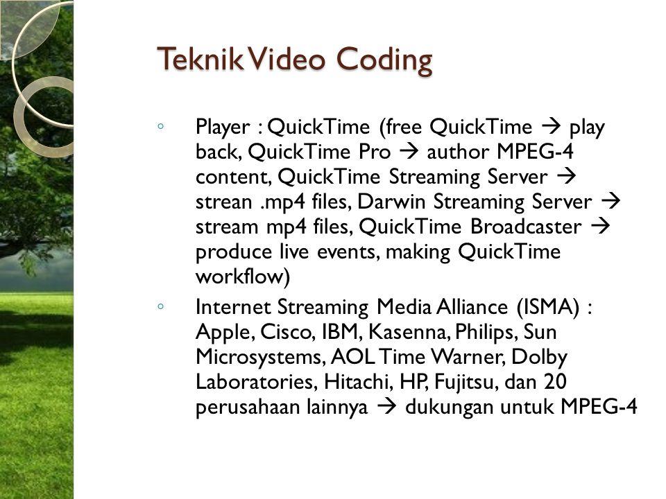 Teknik Video Coding