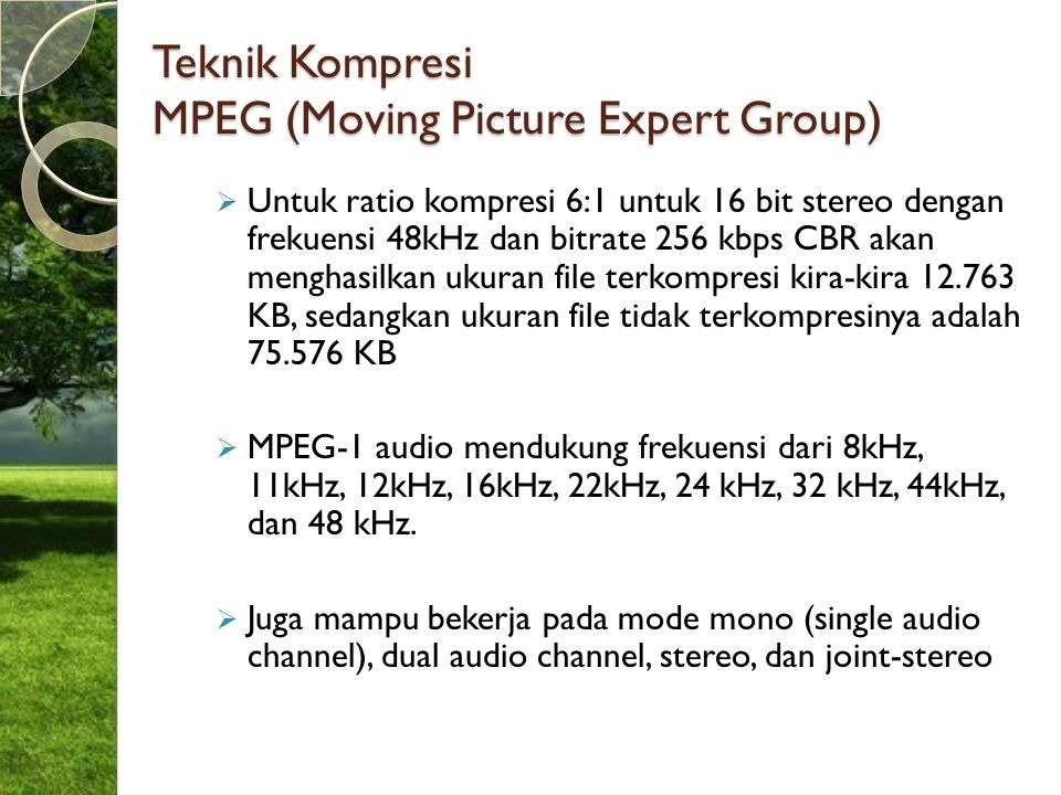 Teknik Kompresi MPEG (Moving Picture Expert Group)