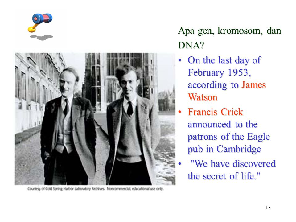 Apa gen, kromosom, dan DNA On the last day of February 1953, according to James Watson.