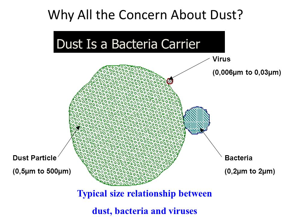 Why All the Concern About Dust