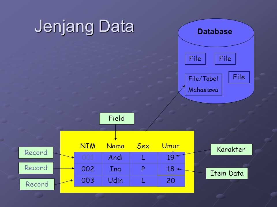 Jenjang Data Database File File File Field NIM Nama Sex Umur Karakter