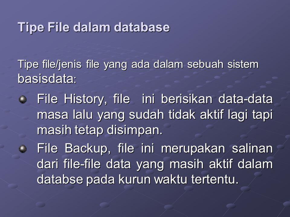Tipe File dalam database