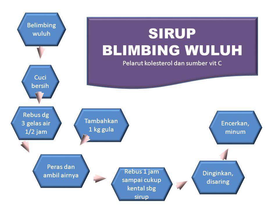 SIRUP BLIMBING WULUH Belimbing wuluh