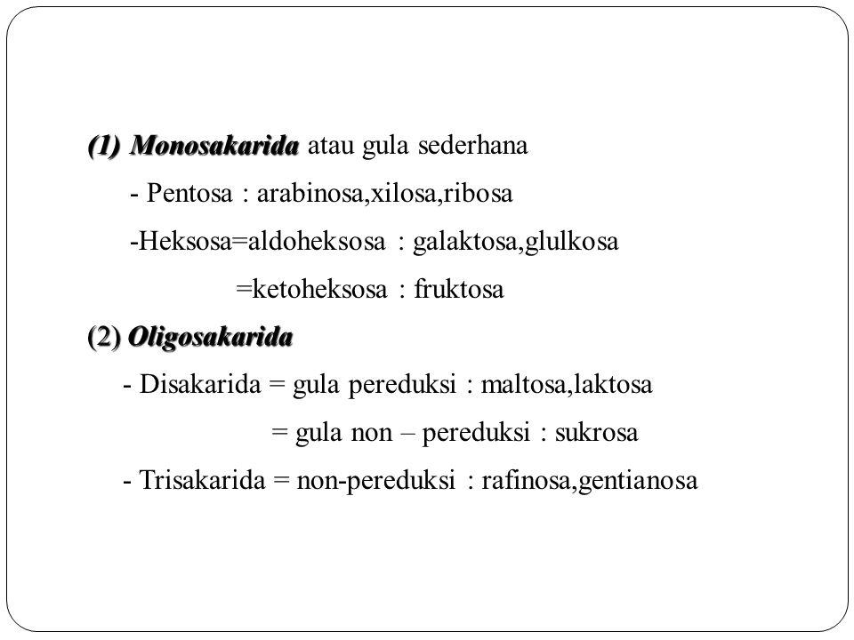 Monosakarida atau gula sederhana