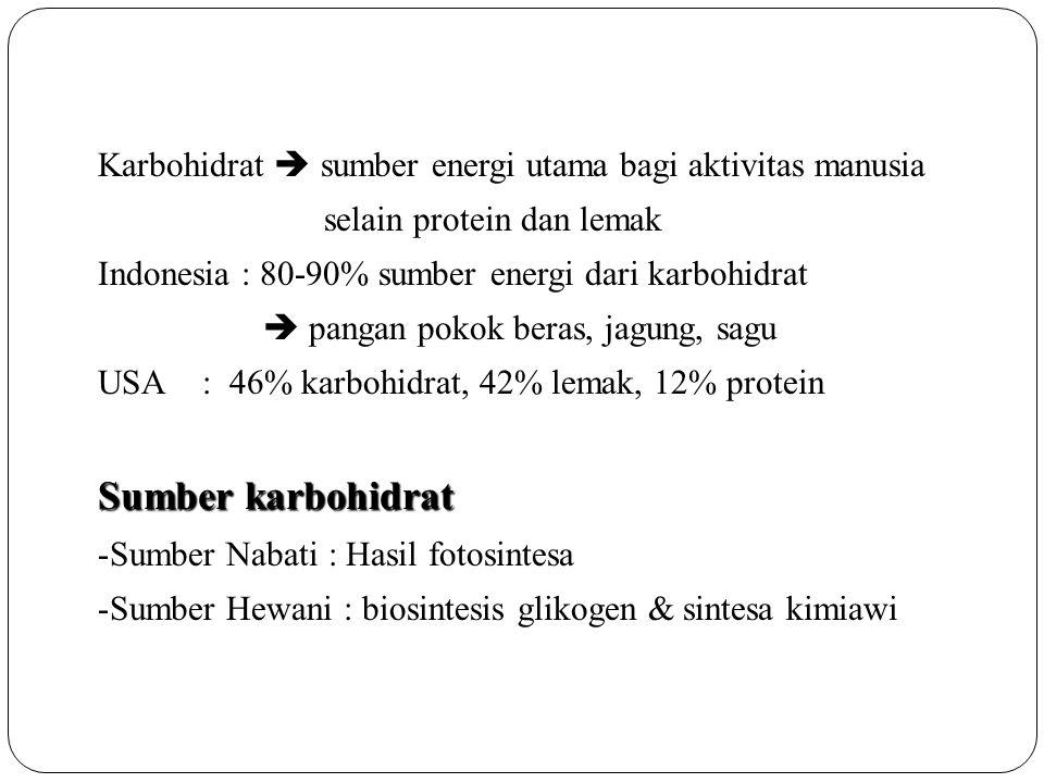 Karbohidrat  sumber energi utama bagi aktivitas manusia
