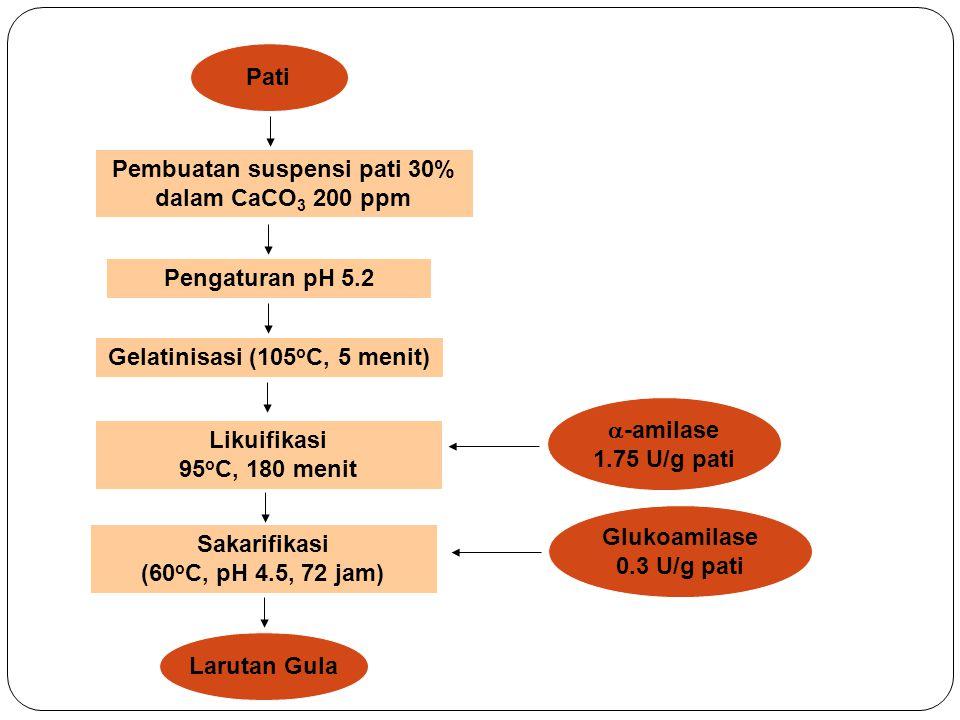 Hidrolisis Enzim Konversi pati menjadi gula Pati