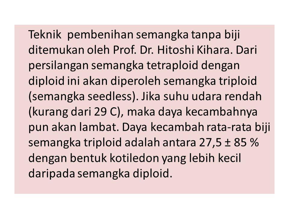 Teknik pembenihan semangka tanpa biji ditemukan oleh Prof. Dr