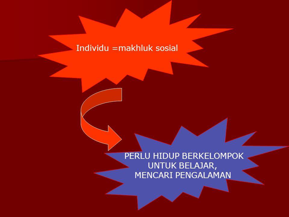 Individu =makhluk sosial