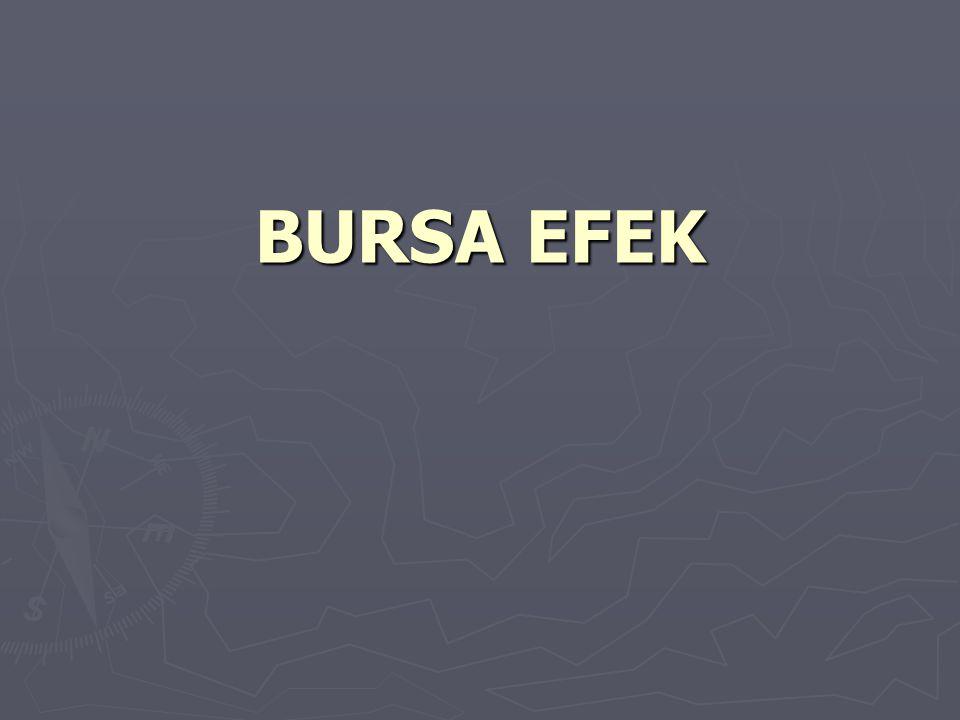 BURSA EFEK