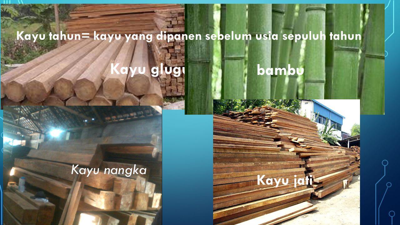 Kayu glugu bambu Kayu nangka Kayu jati