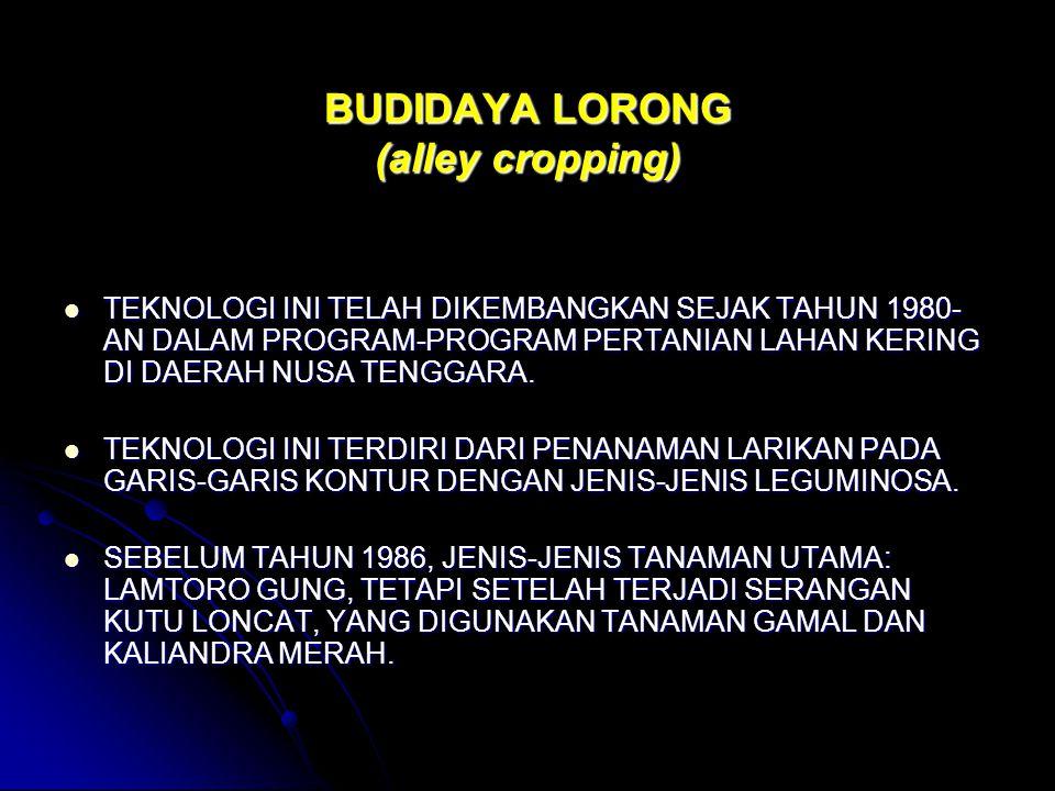 BUDIDAYA LORONG (alley cropping)