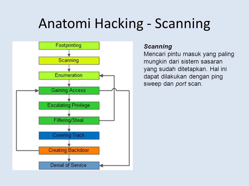 Anatomi Hacking - Scanning
