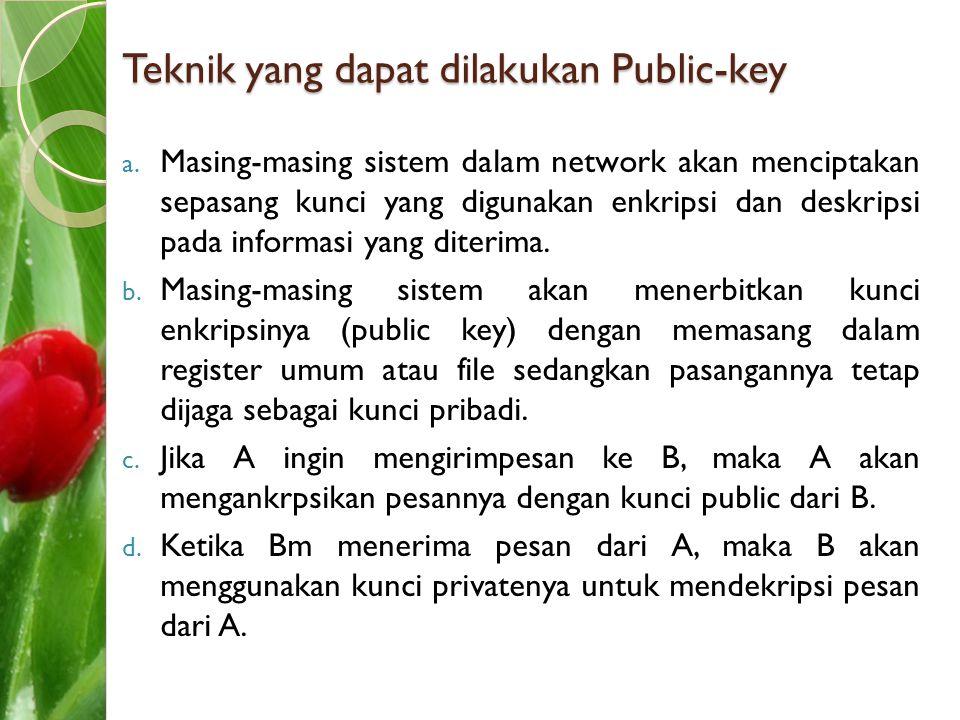 Teknik yang dapat dilakukan Public-key