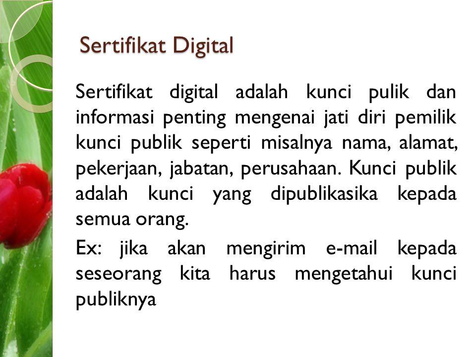 Sertifikat Digital