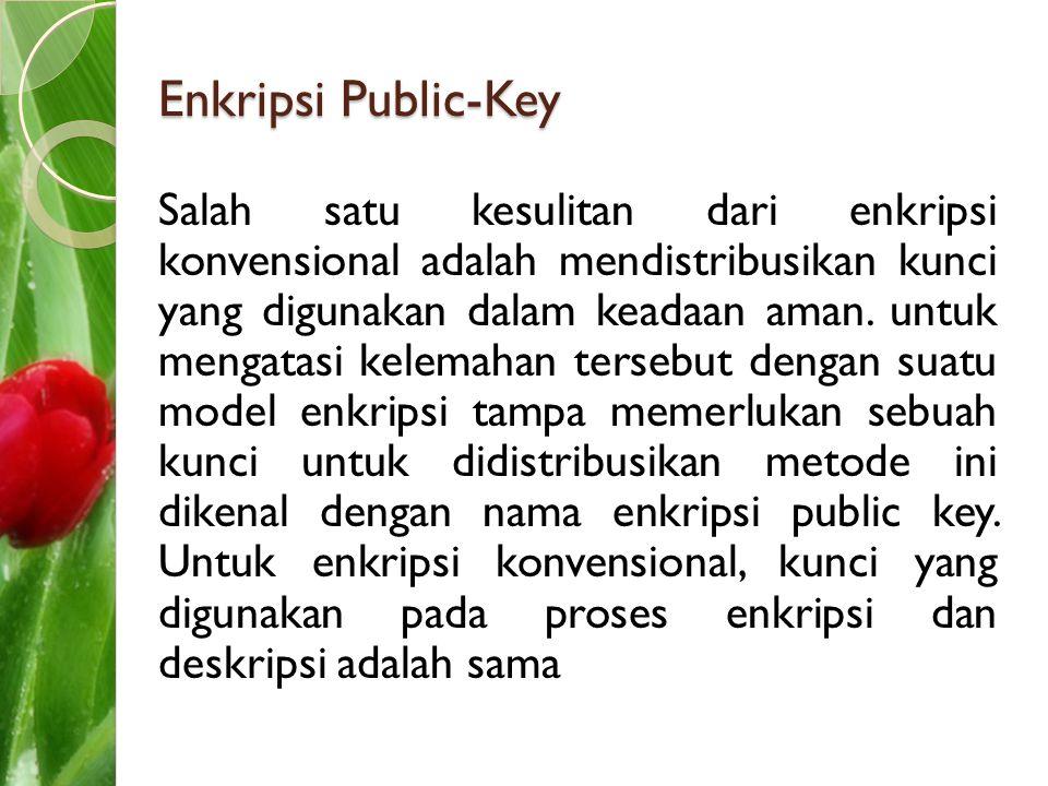 Enkripsi Public-Key