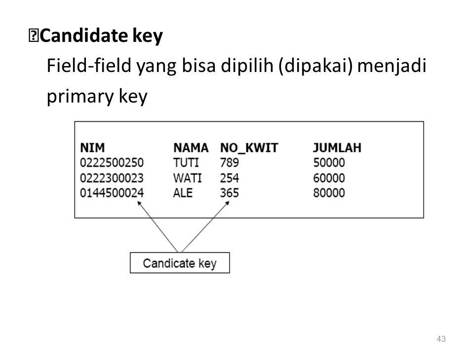 ◆Candidate key Field-field yang bisa dipilih (dipakai) menjadi primary key