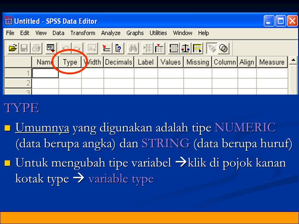 TYPE Umumnya yang digunakan adalah tipe NUMERIC (data berupa angka) dan STRING (data berupa huruf)