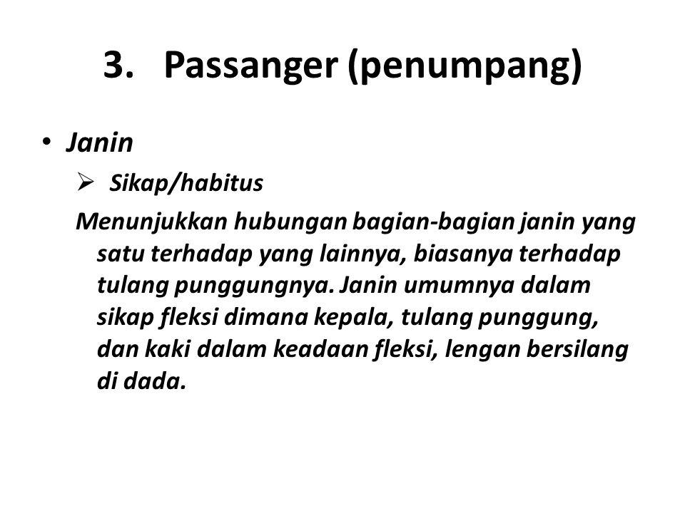 3. Passanger (penumpang)