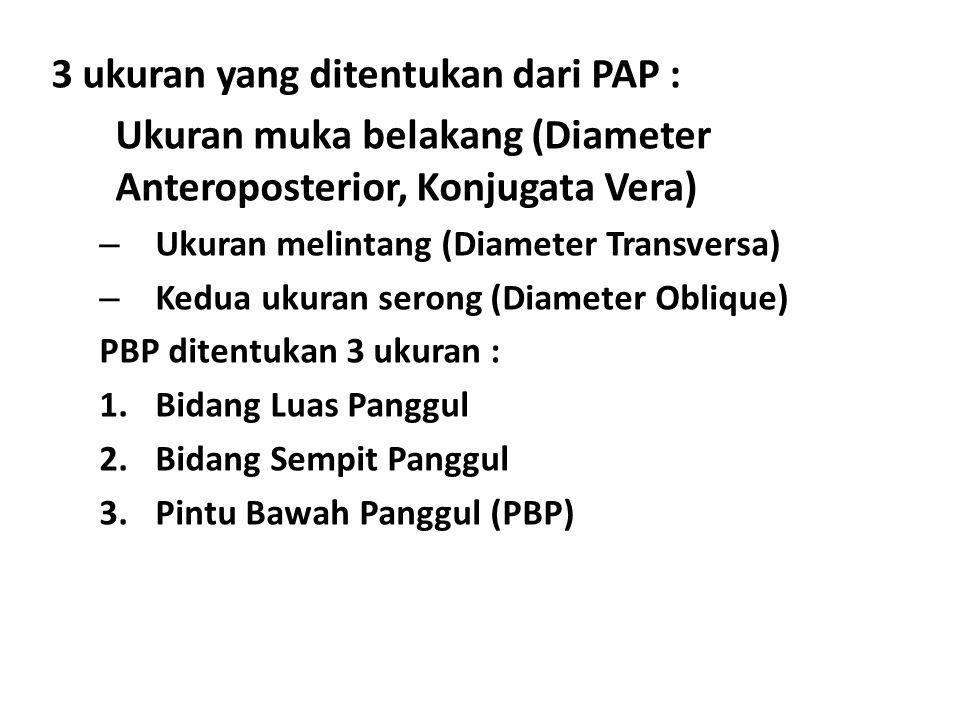 3 ukuran yang ditentukan dari PAP :