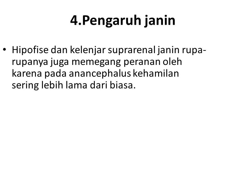 4.Pengaruh janin