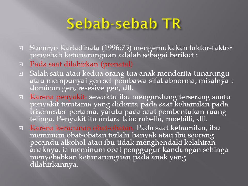 Sebab-sebab TR Sunaryo Kartadinata (1996:75) mengemukakan faktor-faktor penyebab ketunarunguan adalah sebagai berikut :