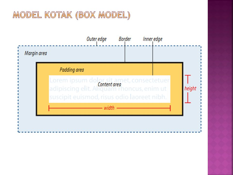 MODEL kotak (BOX MODEL)