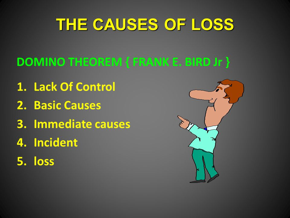 THE CAUSES OF LOSS DOMINO THEOREM { FRANK E. BIRD Jr } Lack Of Control