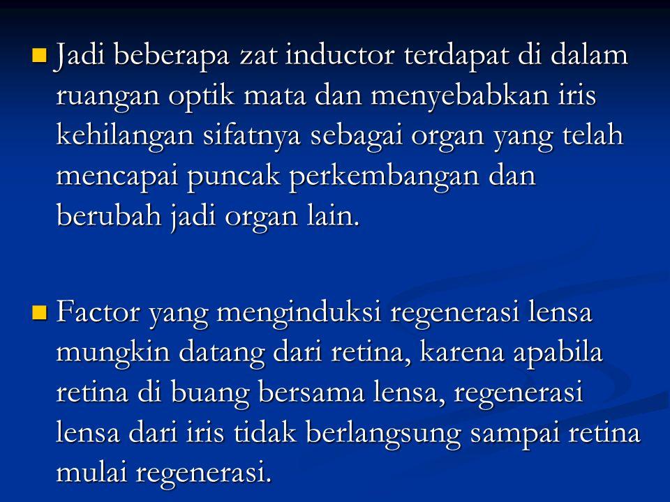 Jadi beberapa zat inductor terdapat di dalam ruangan optik mata dan menyebabkan iris kehilangan sifatnya sebagai organ yang telah mencapai puncak perkembangan dan berubah jadi organ lain.
