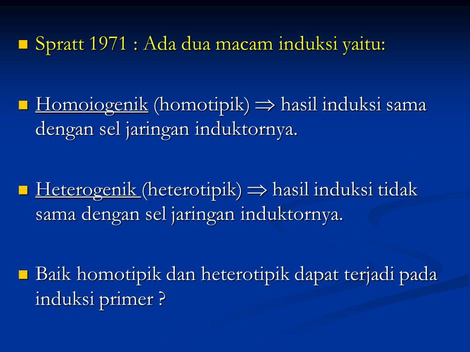 Spratt 1971 : Ada dua macam induksi yaitu: