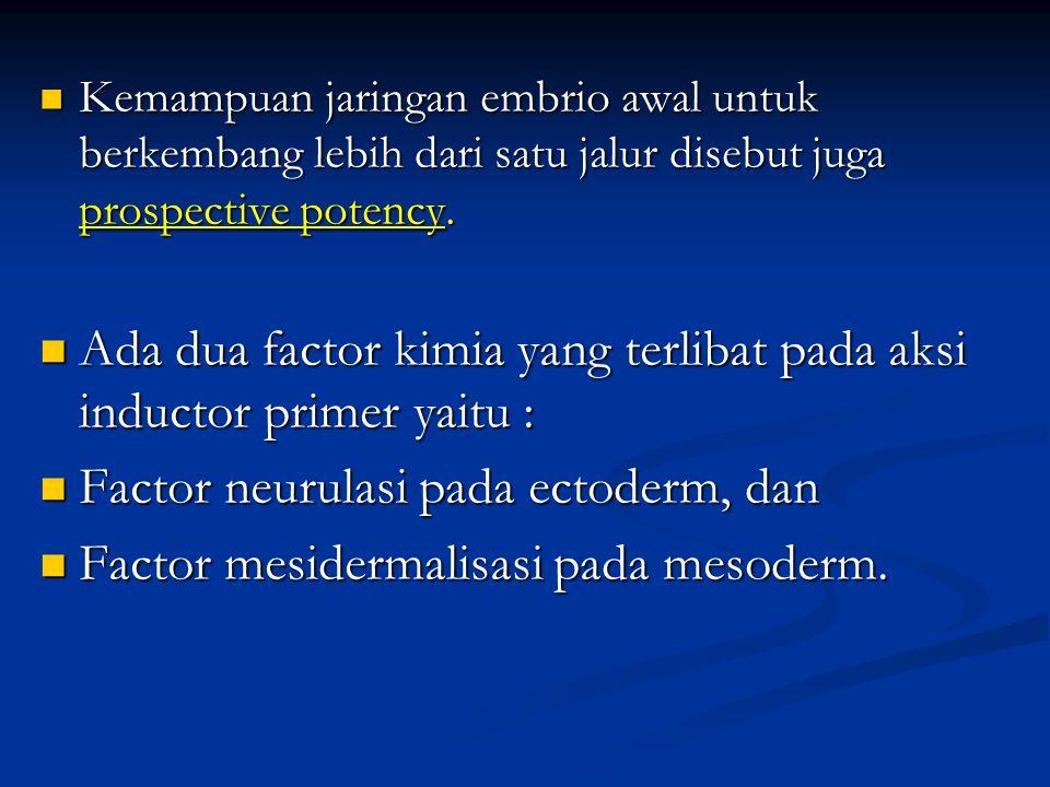 Ada dua factor kimia yang terlibat pada aksi inductor primer yaitu :