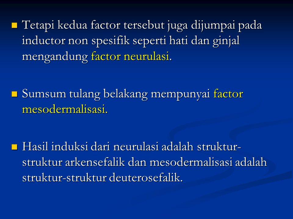 Tetapi kedua factor tersebut juga dijumpai pada inductor non spesifik seperti hati dan ginjal mengandung factor neurulasi.