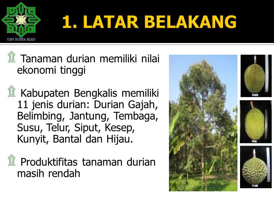 1. LATAR BELAKANG Tanaman durian memiliki nilai ekonomi tinggi