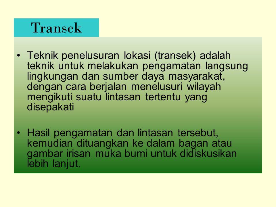 Transek