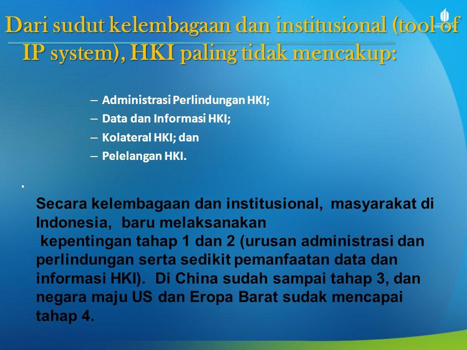 Dari sudut kelembagaan dan institusional (tool of IP system), HKI paling tidak mencakup: