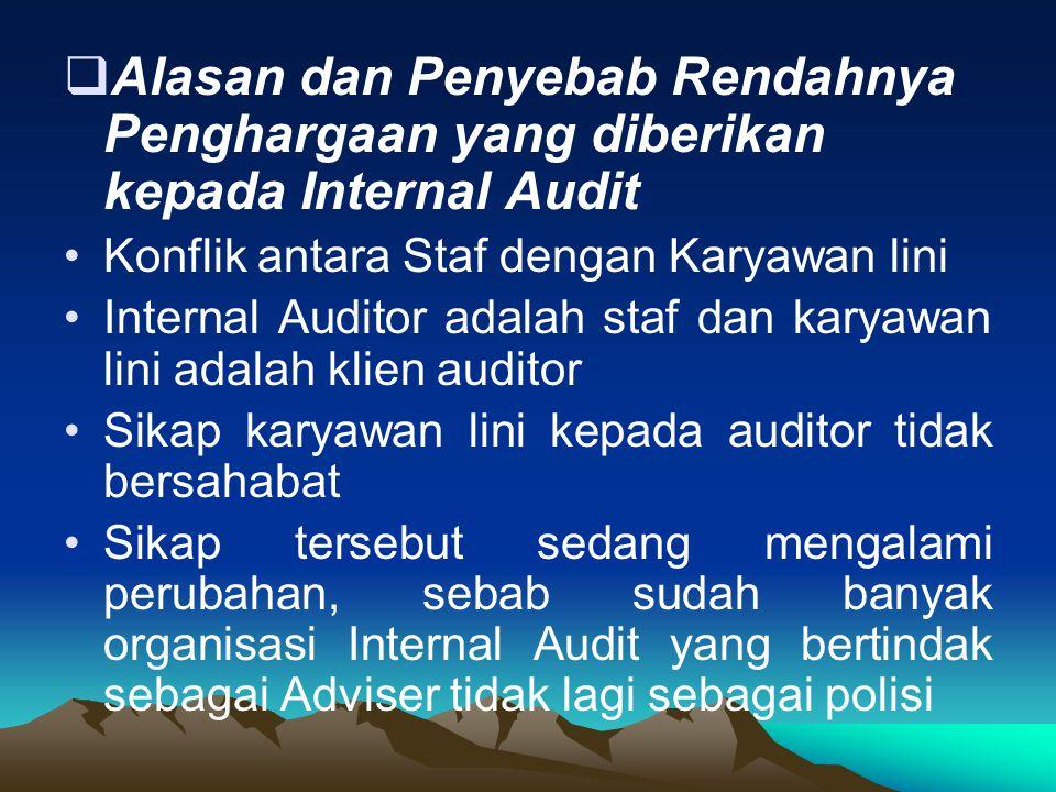 Alasan dan Penyebab Rendahnya Penghargaan yang diberikan kepada Internal Audit