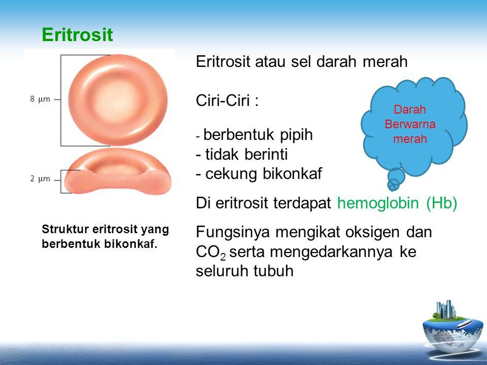 Eritrosit Eritrosit atau sel darah merah Ciri-Ciri : - berbentuk pipih - tidak berinti - cekung bikonkaf.