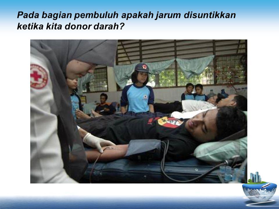 Pada bagian pembuluh apakah jarum disuntikkan ketika kita donor darah