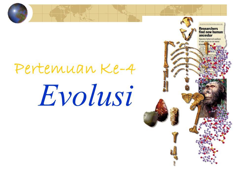 Pertemuan Ke-4 Evolusi