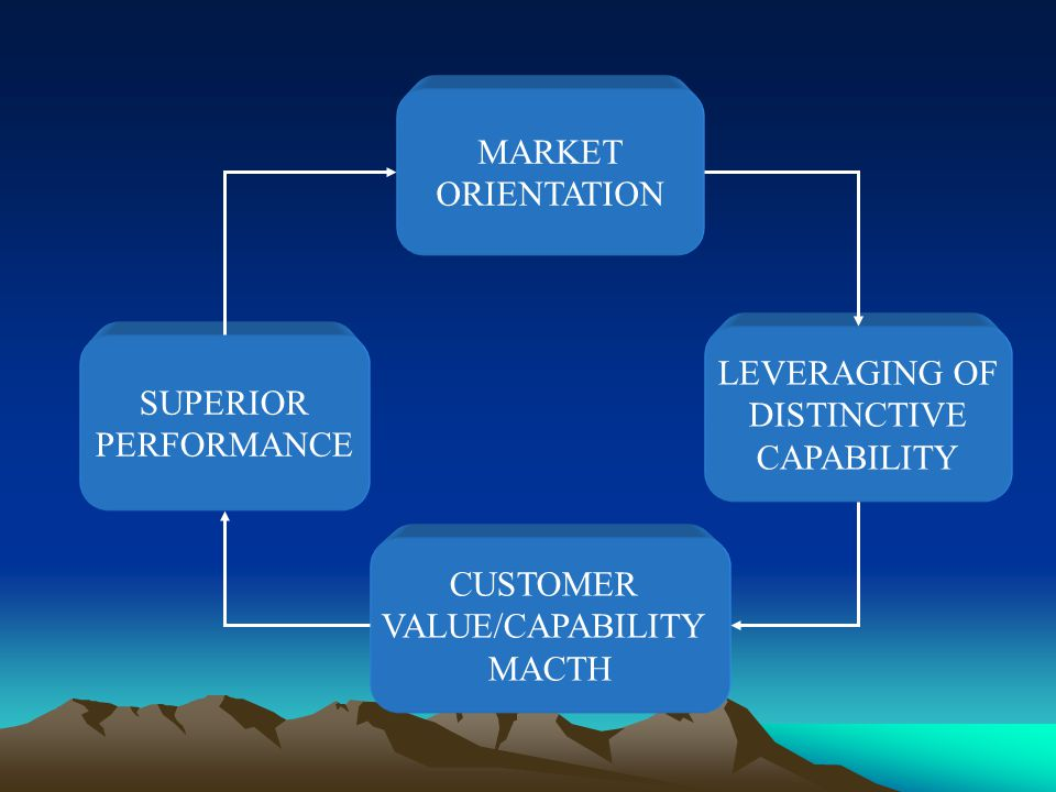 MARKET ORIENTATION. LEVERAGING OF. DISTINCTIVE. CAPABILITY. SUPERIOR. PERFORMANCE. CUSTOMER. VALUE/CAPABILITY.