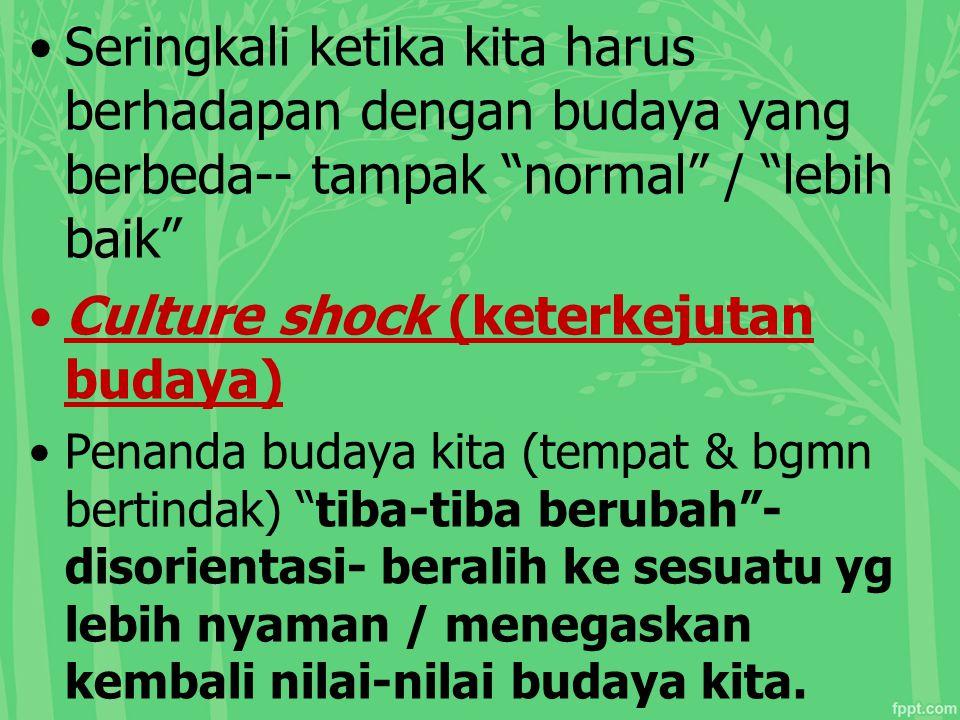 Culture shock (keterkejutan budaya)