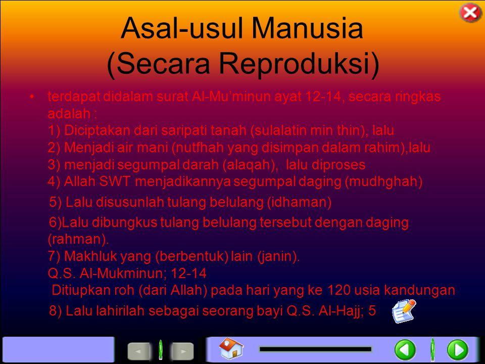 Asal-usul Manusia (Secara Reproduksi)
