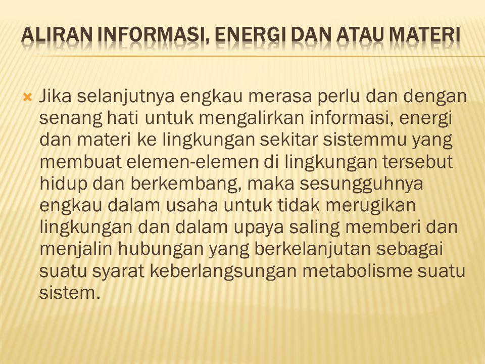 Aliran Informasi, Energi dan atau Materi